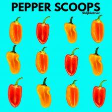 Pepper Scoops!