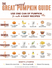 The Great Canned Pumpkin Guide