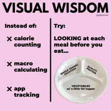 VISUAL WISDOM